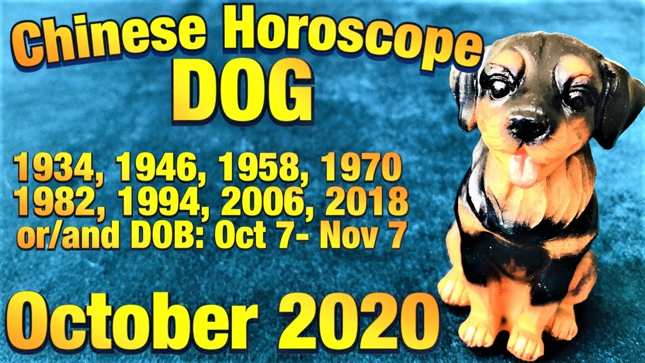 DOG. Chinese Horoscope for October 2020. Wood Stick Divination. Tarot Reading.
